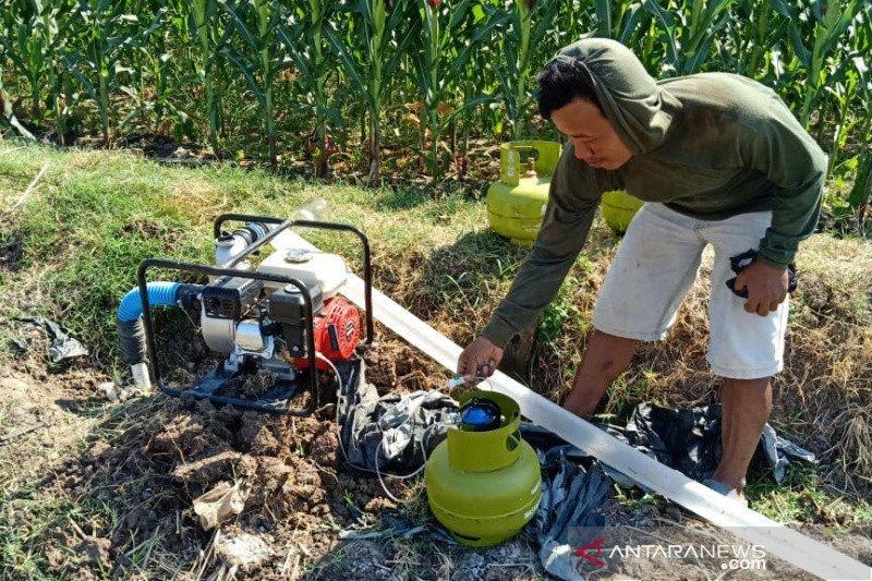 Catat Nih! Ada 10 Ribu Konverter Kit LPG Untuk Petani