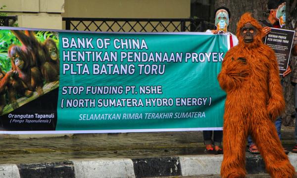 PLTA Batang Toru Molor, Faktor Lingkungan dan Pandemi