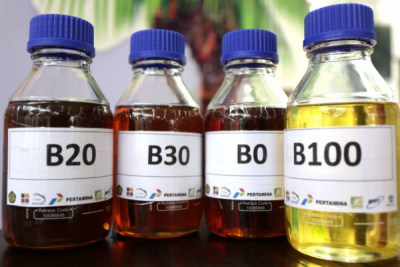Photo of Pengembangan Biofuel Perlu Perhatian Serius