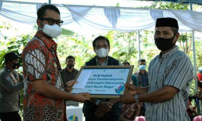 Photo of Program Elektrifikasi Pertanian PLN Dongkrak Pendapatan Petani Kabupaten Sinjai