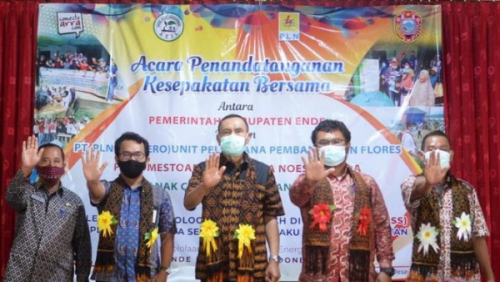 Photo of Tim PLN Lakukan Run Reliability Co-firing dan Implementasi TOSS di NTT